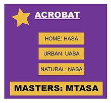 All-StarACROBAT-bottom.JPG