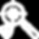 icon-proactive-threat-detection-white-80