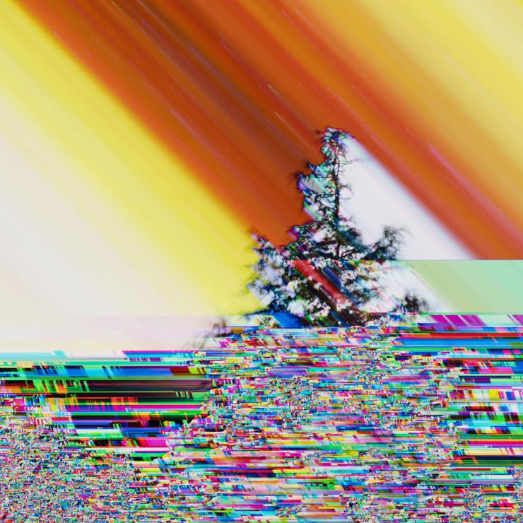 8395.jpg
