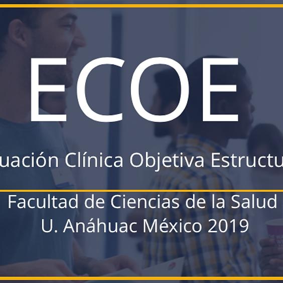 ECOE Profesional 12 al 15 de Marzo 2019 (SINODALES)  (1)