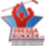 звезда лого.jpg