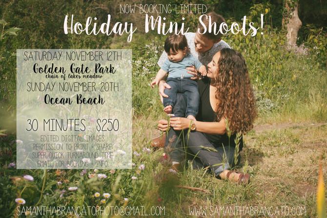 Holiday Mini Shoots!