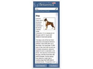 Word add-in l Britannica