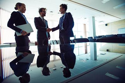 Sistema de Evaluación y Retroalimentación Cliente - Proveedor - IEVEM Consulting Group