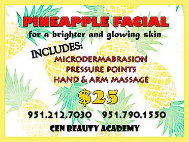 pineapple 5x6.jpg