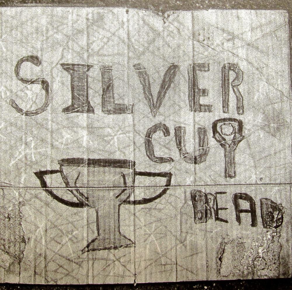 silver cup.jpg