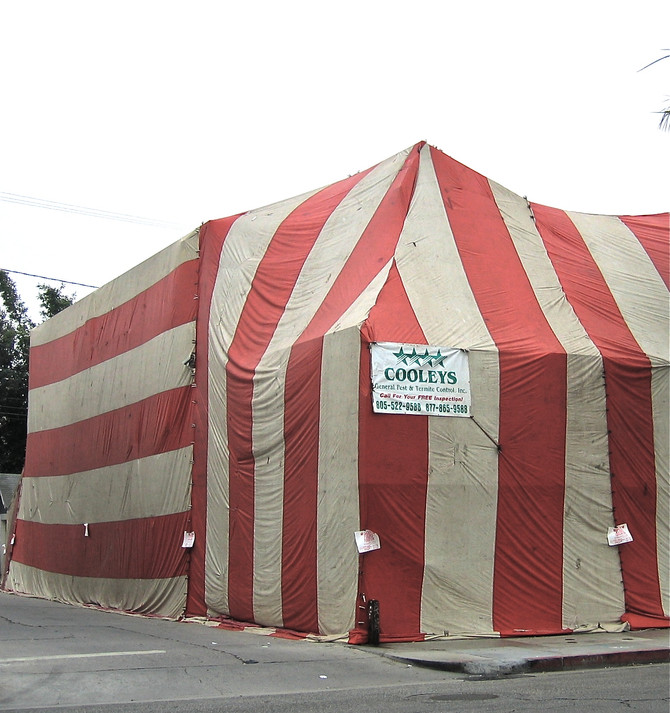 Commercial Fumigation, Venice Beach, 2004 (photo by Greg Colson)