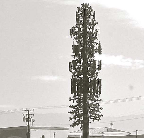 Cellphone Tower, California, 2013 (photo by Greg Colson)