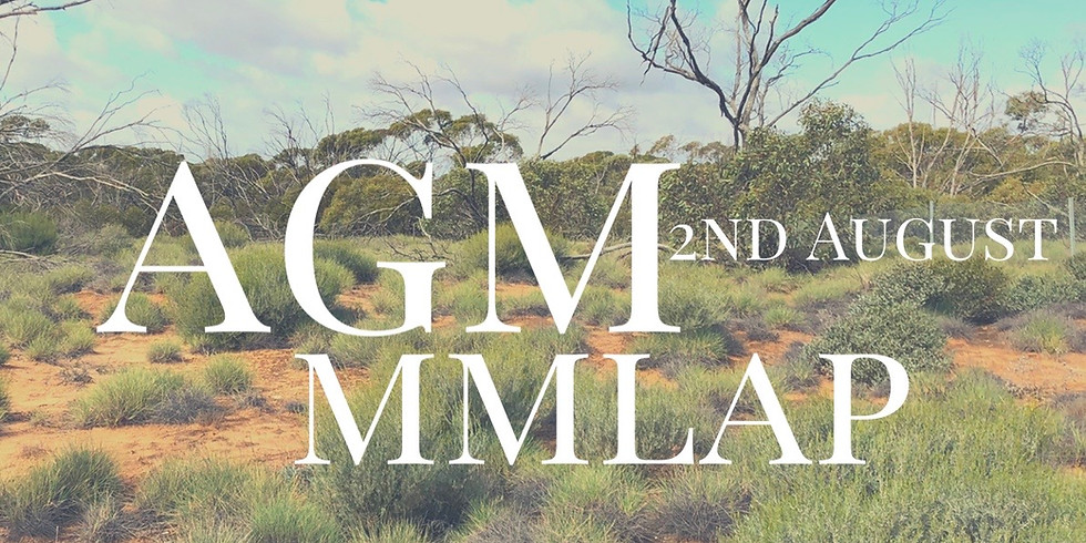 MMLAP AGM 2020