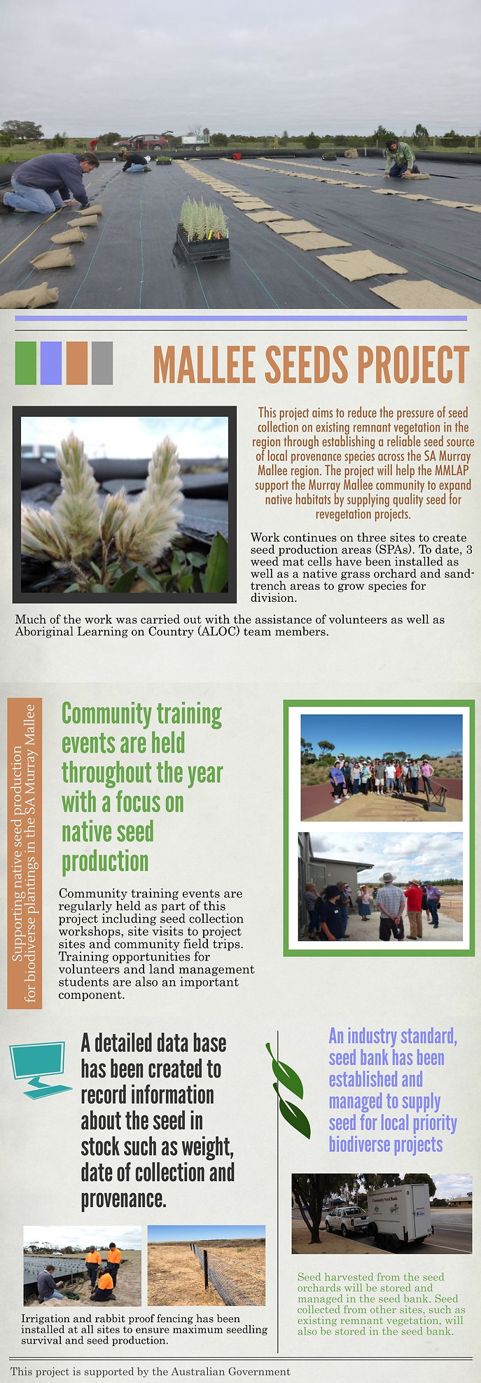 SA Murray Mallee, seed production area, seed orchard, seed bank, infographic