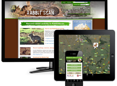 Record Rabbit Activity Using RabbitScan