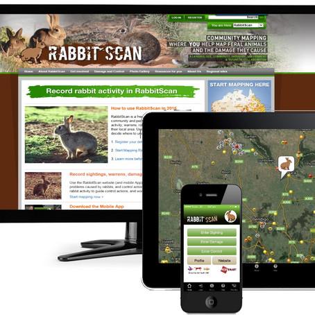 Record Rabbit ActivityUsing RabbitScan