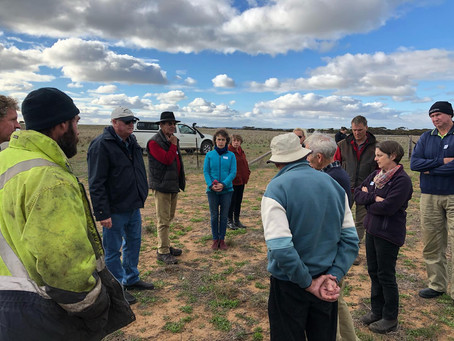 Regenerative Farming Experts Helping Mallee Farmers to Manage Drought