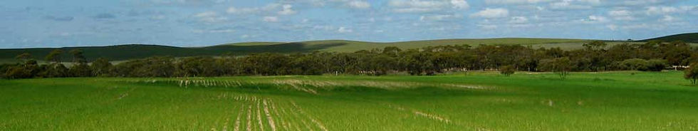 Environmental workshops, sustainable agriculture workshops, free events SA Murray Mallee