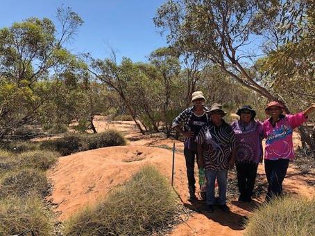 SA Murray Darling Basin Monitoring