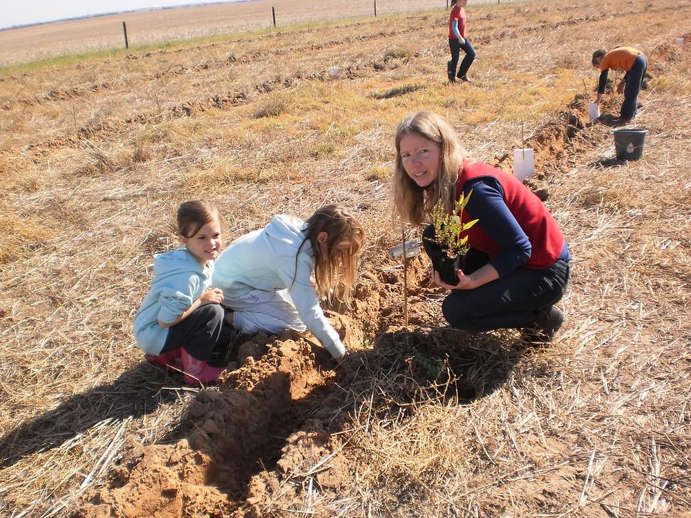 tree planting.jpg