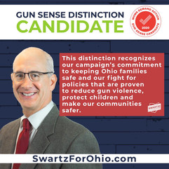 2020 Moms Demand Action Gun Sense Candidate Distinction