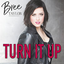 TURN IT UP-cover.jpg