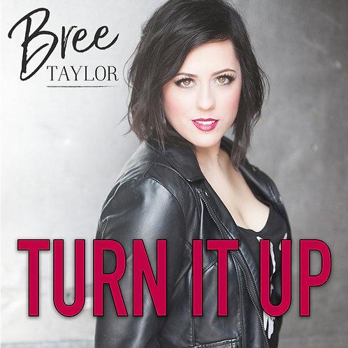 Turn It Up - Single