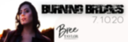 Burning Bridges - Twitter Banner.jpg