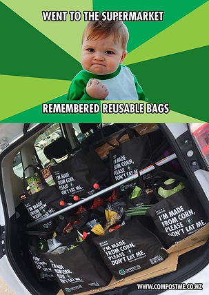 reusable bags.jpg