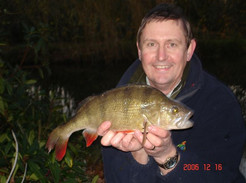 fisheries perch - derek buxton.jpg