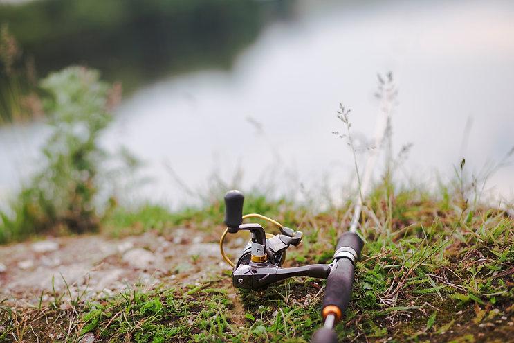 fishing-rod-green-grass.jpg
