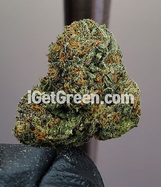 Pink Star (Indica)