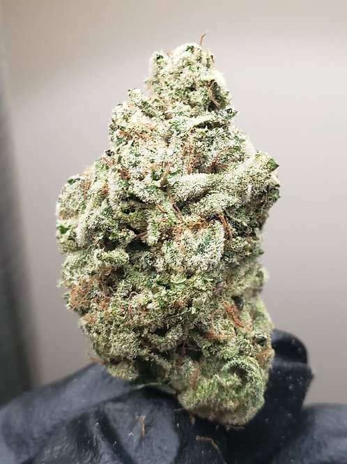 [NEW][Primo] Pink Ice (Indica)