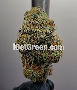 Strawberry Cough (Sativa)