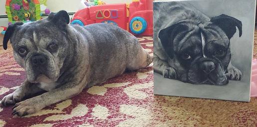 bulldog posing with her portrait