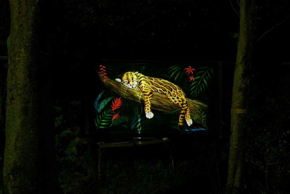 ジャングルのゆりかご