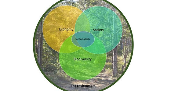 Economy-within-the-environment1.jpg