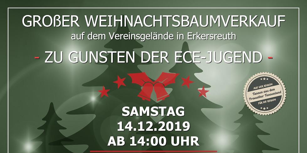 Weihnachtsbaumverkauf für Mitglieder und Freunde des Vereins