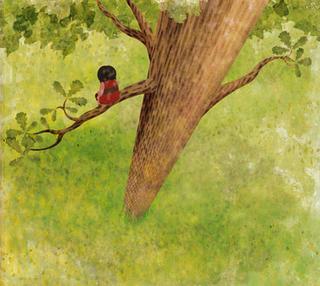 Ivy, stuck up a tree