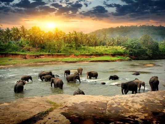 Sri Lanka poised to welcome back tourists