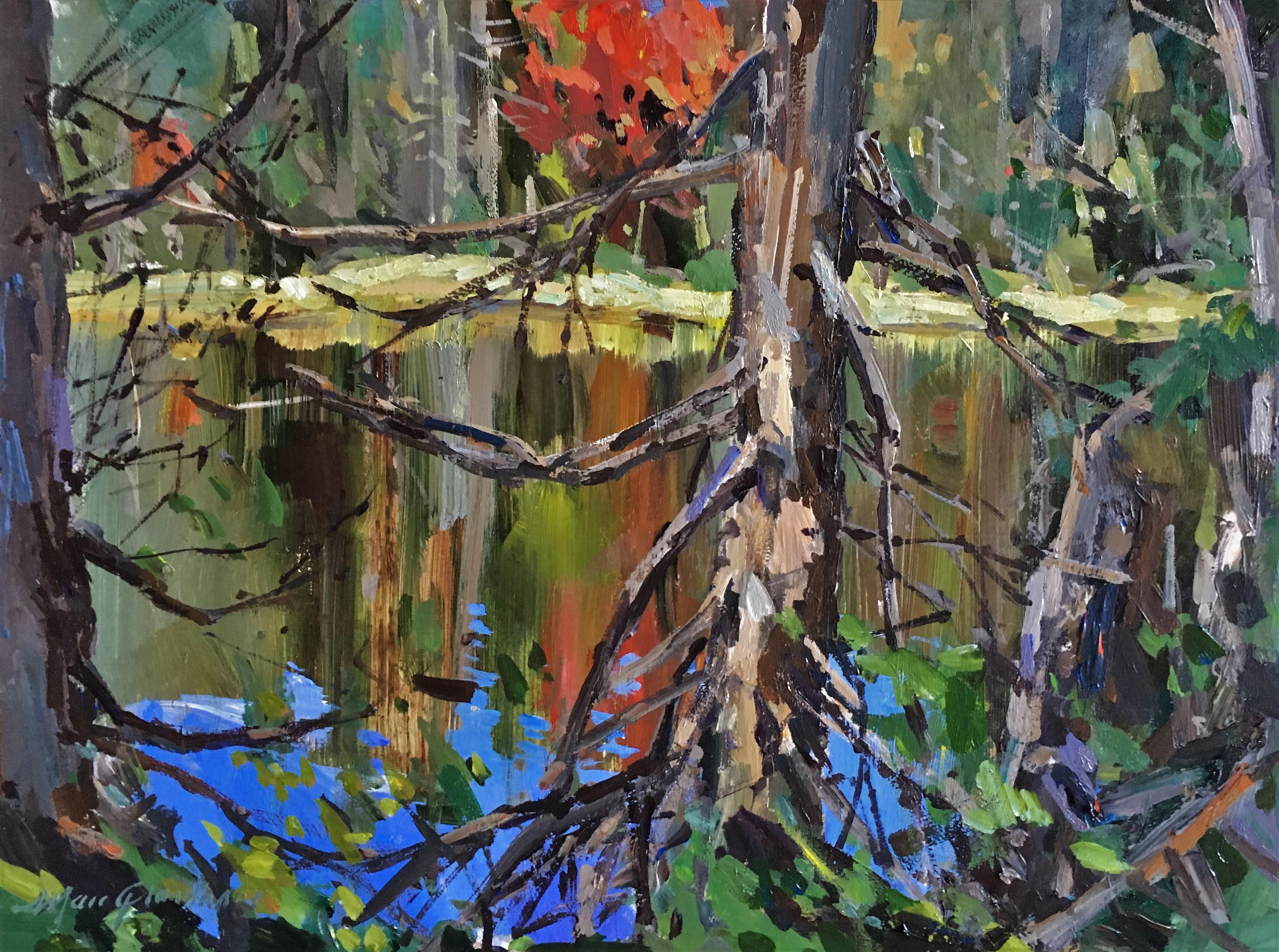 Pleines couleurs sur Cache lake