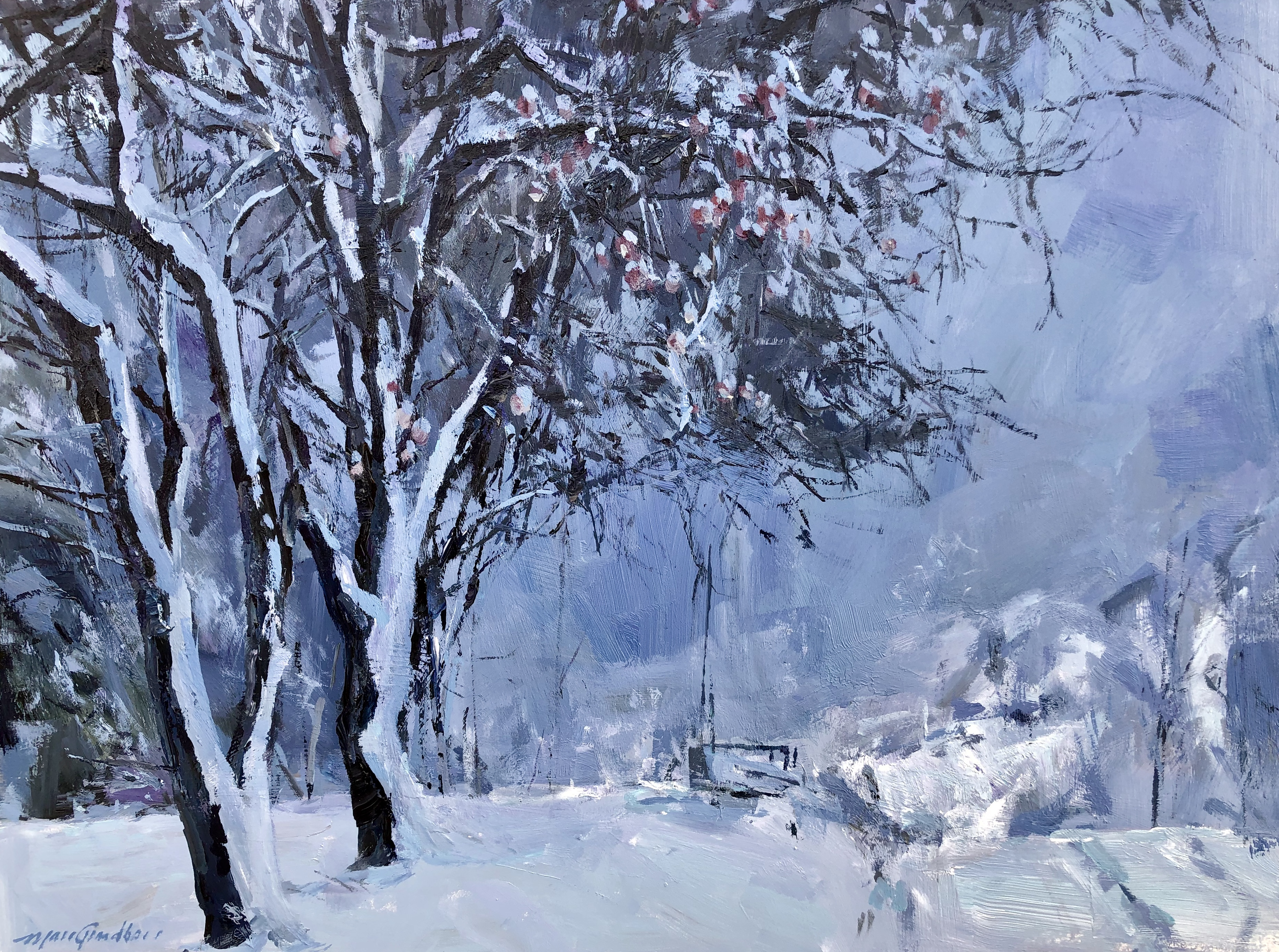 Pommiers sous la neige