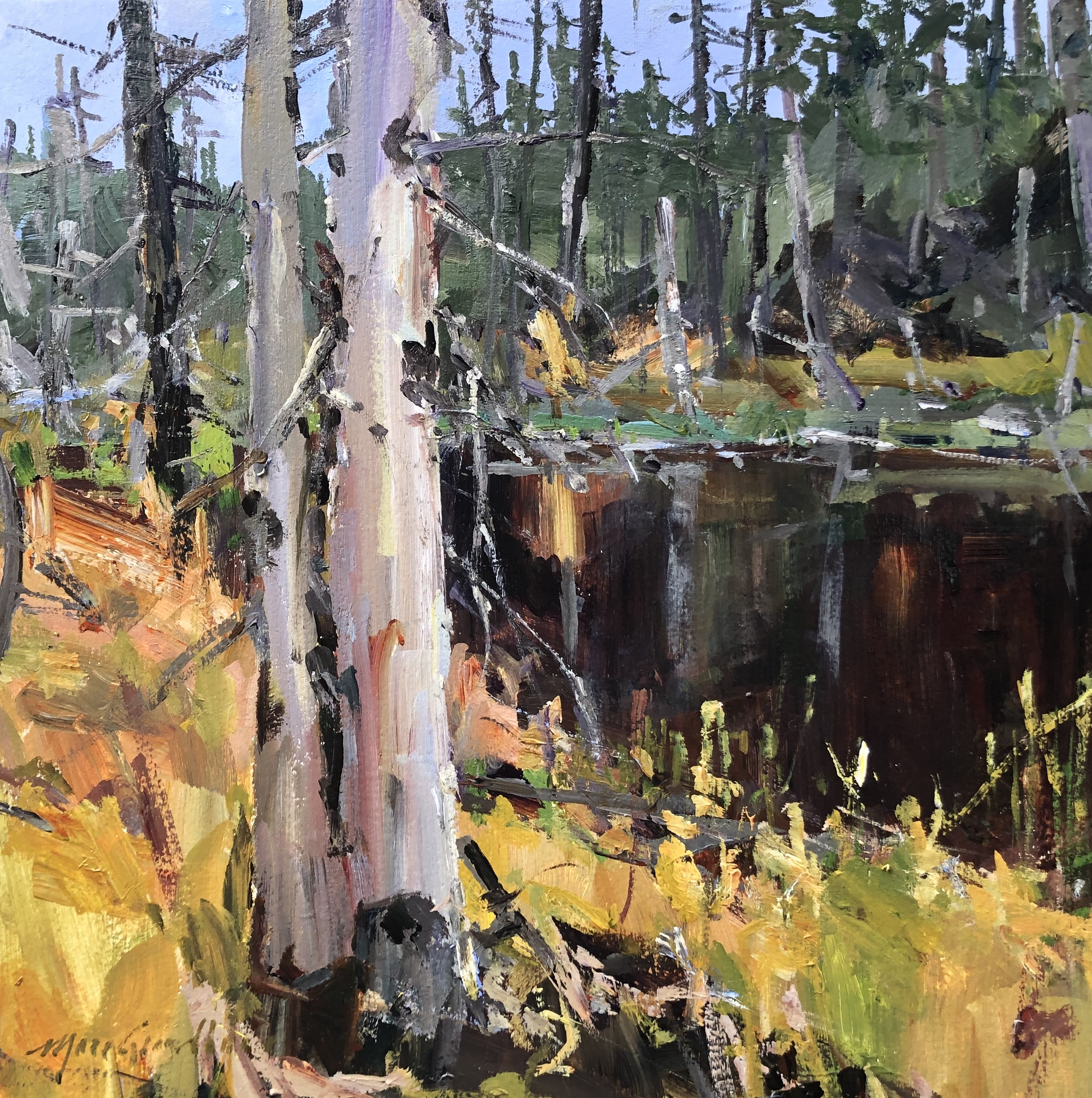 Septembre sur l'étang caché 4