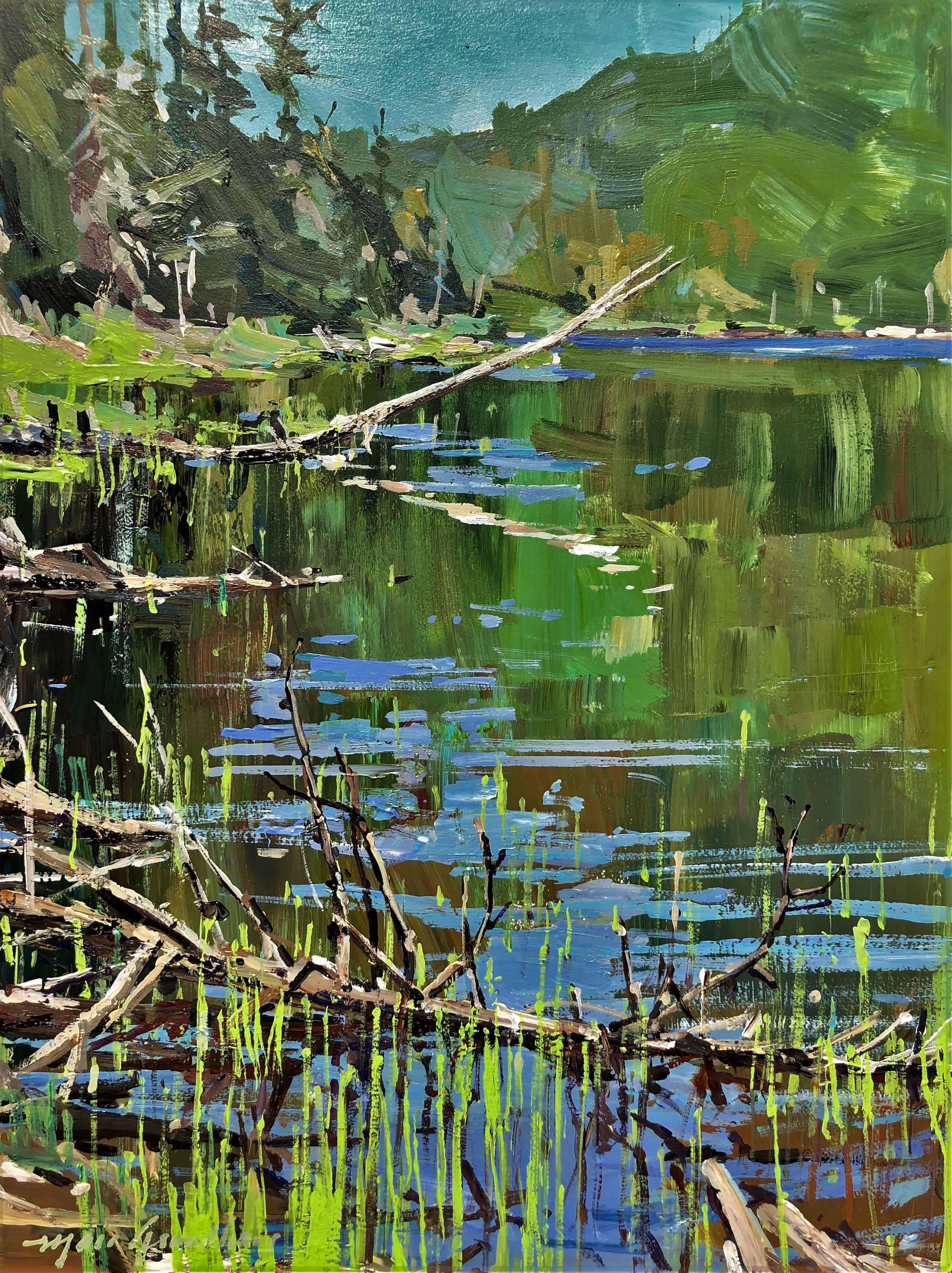 Plein été au Lac des Foins