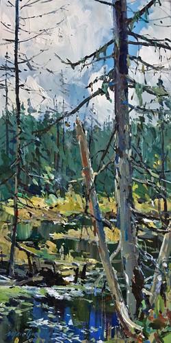 Septembre sur l'étang caché 2