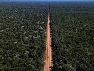 ESPECIAL: Pavimentação da BR-319 volta ao centro da polêmica ambiental