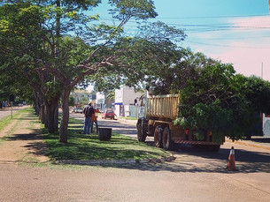 Semosp intensifica trabalho de reparos e limpeza em em vários pontos da cidade