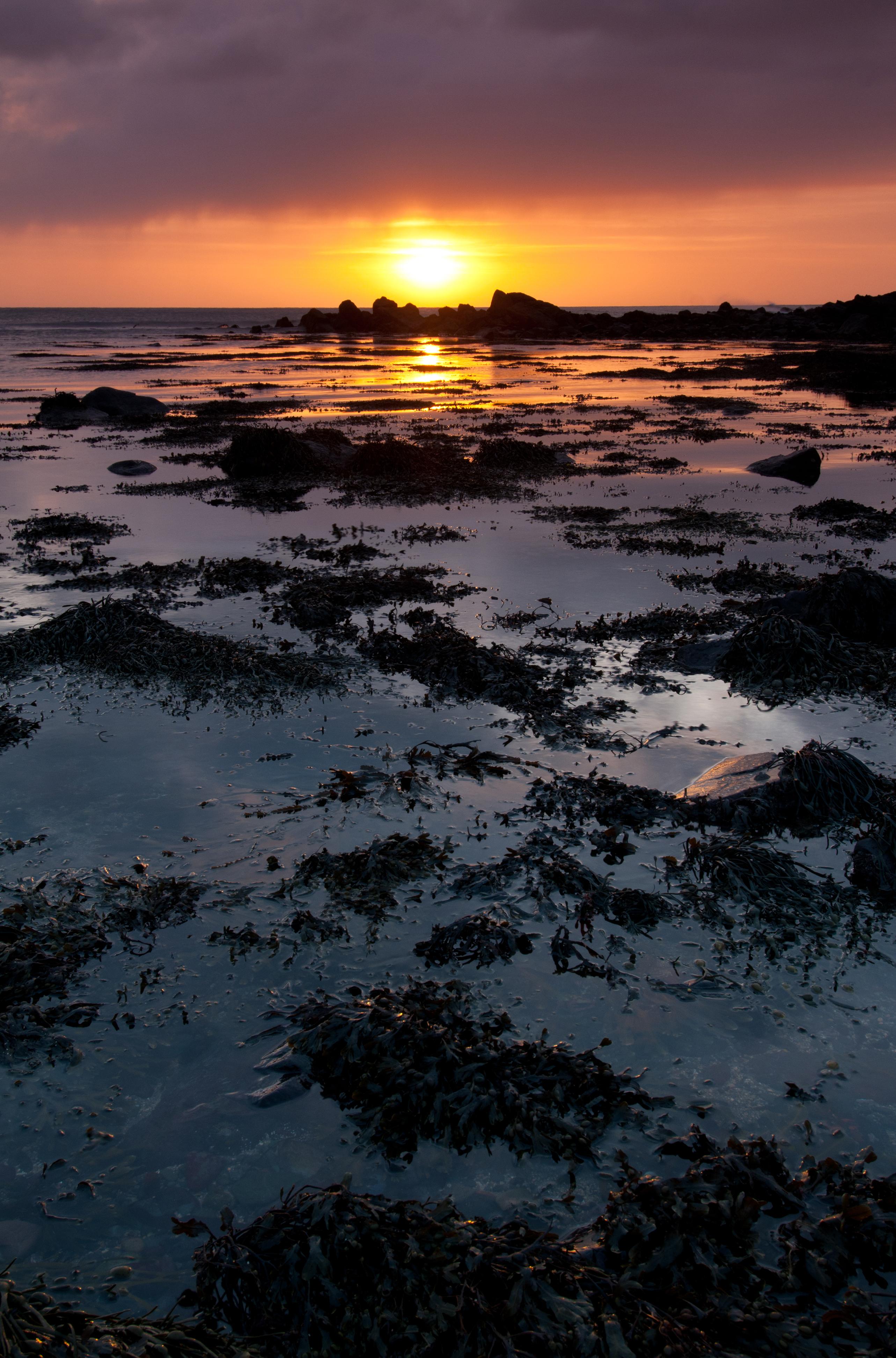 Rising Tide at Sunrise