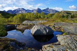 Kalle, Stable Lofoten Weather