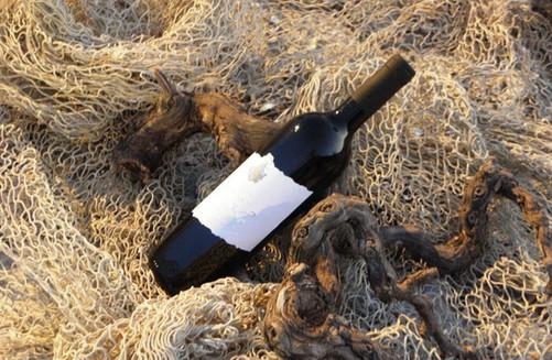 Plavac Mali Bottled
