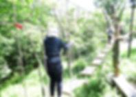 IMG_1541_edited.jpg