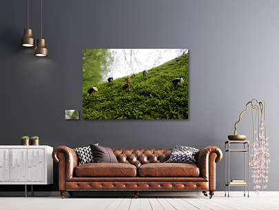 Teepflücker-Sofa.png