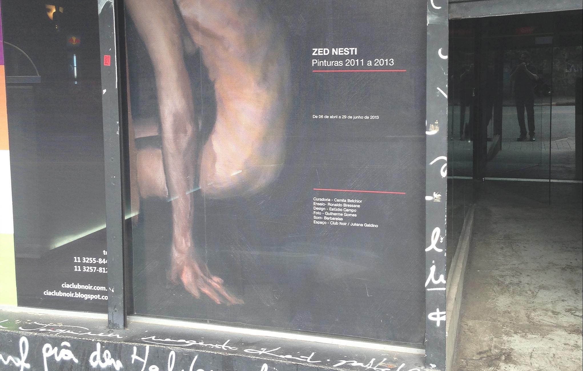 Zed Nesti Pinturas 2011 a 2013