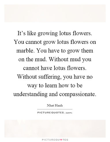 its-like-growing-lotus-flowers-you-canno